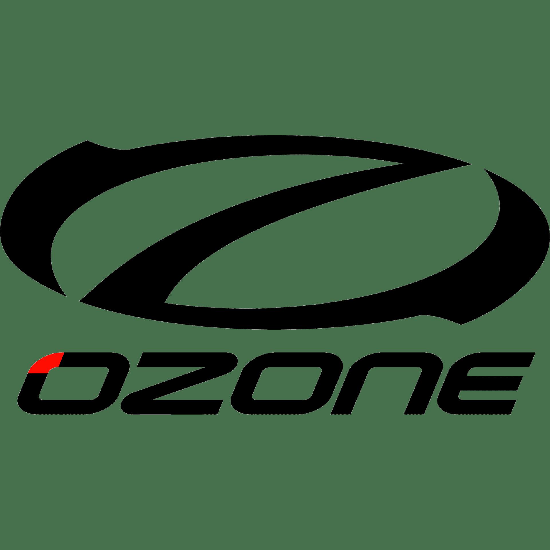 BIG-ozone-logo